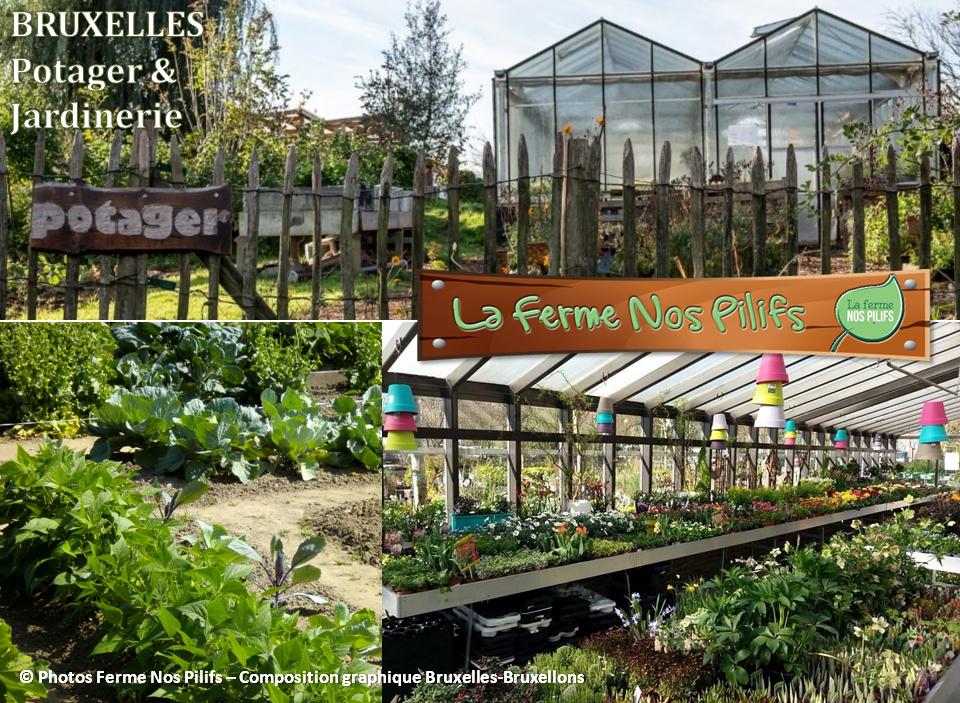 Ferme Nos Pilifs - Une ferme bruxelloise sur 5 hectares...mais bien plus encore ! -  Potager et jardinerie - Bruxelles-Bruxellons