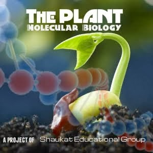 The Plant Molecular Biology (Page)