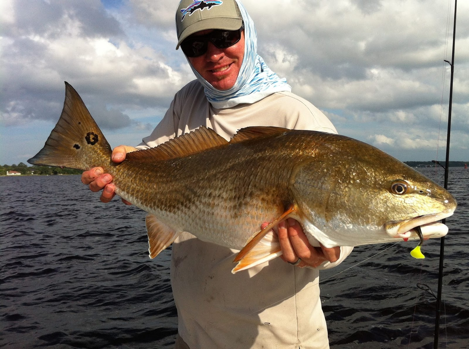 North florida fishing report inshore and backwater for South florida fishing