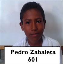 Pedro Zabaleta