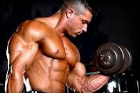 culturismo , construir el músculo