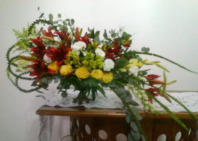 flores jardim camburi:Divina Flor!: O Brasil está florido!