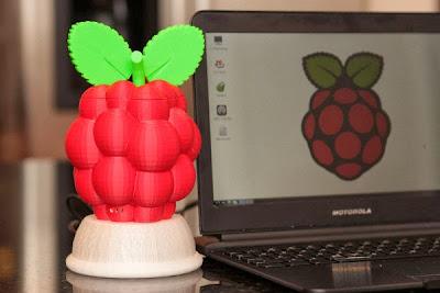 Case em formato de Raspberry