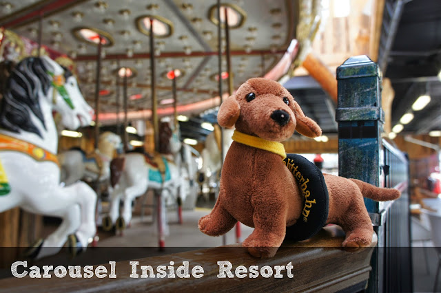 Carousel at Schlitterbahn South Padre Island Beach Resort