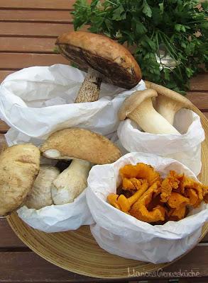 Pilze frisch vom Markt