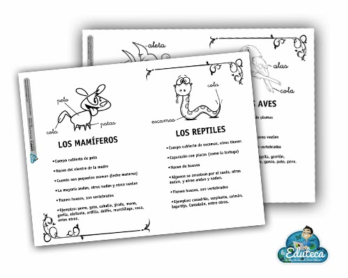 RECURSOS PRIMARIA | Clasificación de los animales. Tarjetas de ...