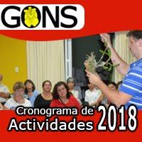 Actividades 2018
