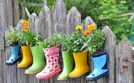 Vou é plantar orquídeas....