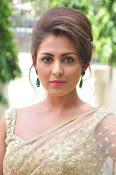 Madhu Shalini sizzling in saree-thumbnail-12
