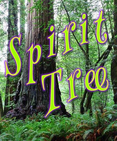 I am a member of The Spirit Tree Grove