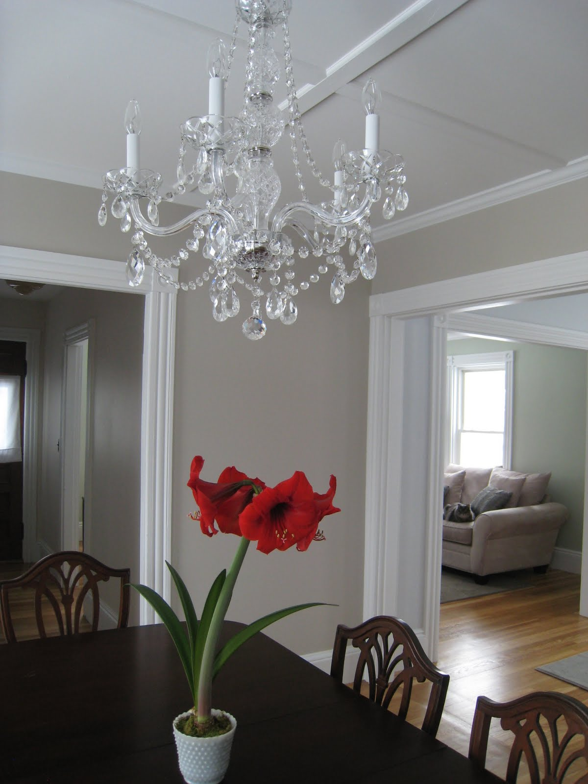 5 crown kabinky dining room - Living and dining room paint colors ...