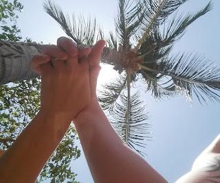 Lua de mel - Jericoacoara. Ceará, bodas de papel, 1 ano de casados, viagem, econômica, praia, sol, romântica,