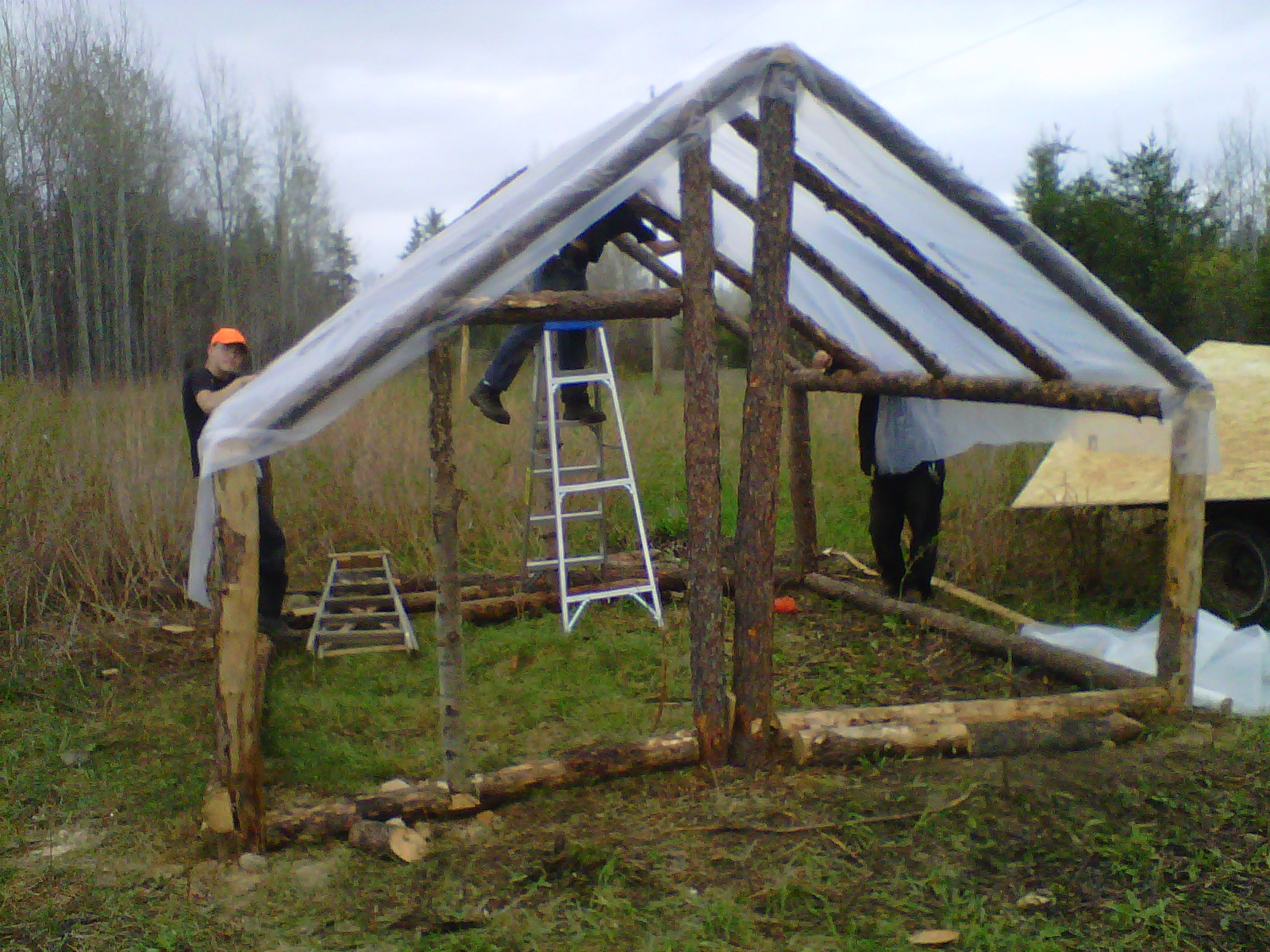 Little house in the big wood how to build a greenhouse - How to build a wooden greenhouse ...