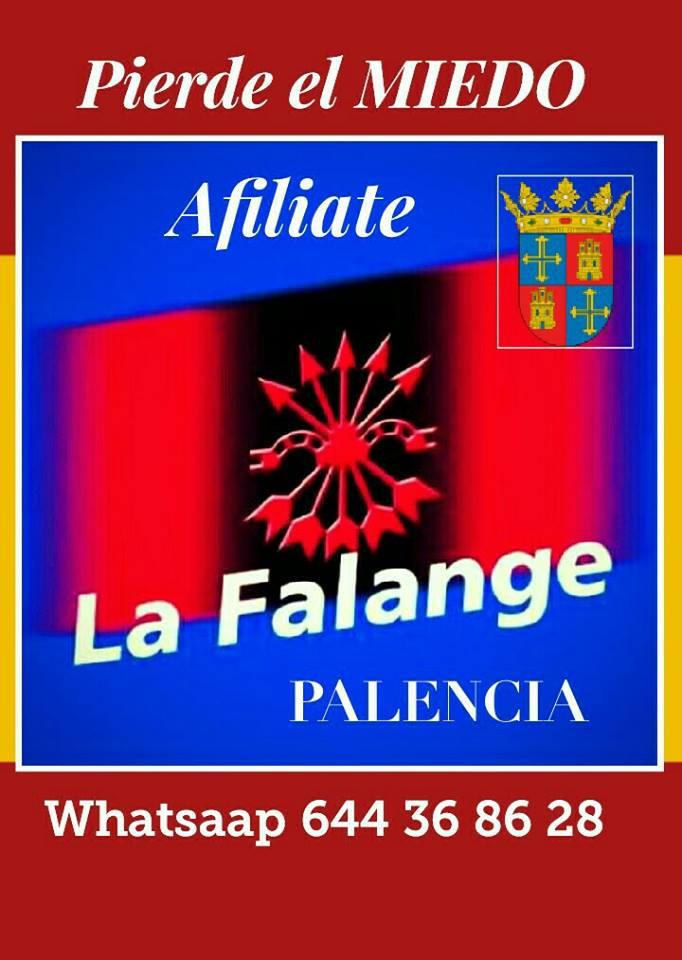 ¡Apoyamos y colaboramos bajo el mando de la Jefatura Provincial de La Falange Palencia !