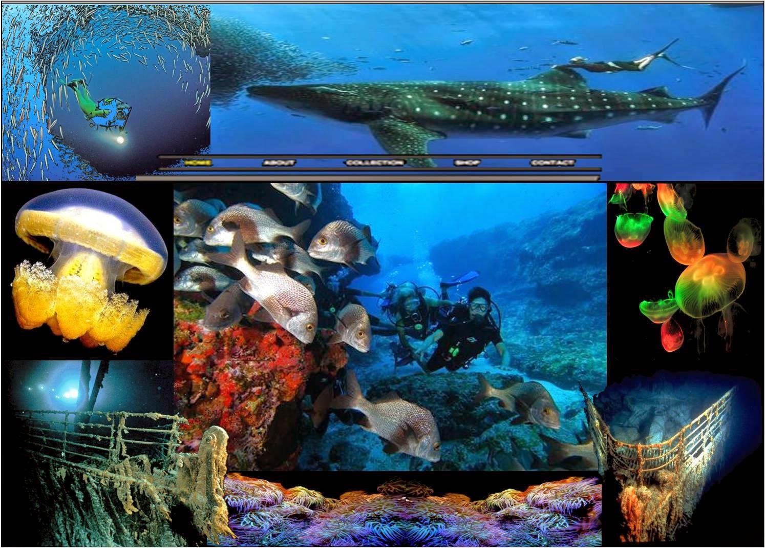www.sitewx.com
