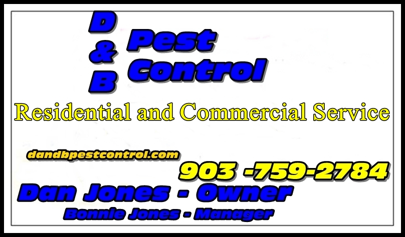 Pest Control Longview Texas and East Texas