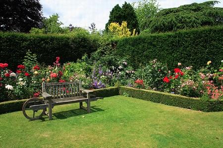 el jardin de las plantas: