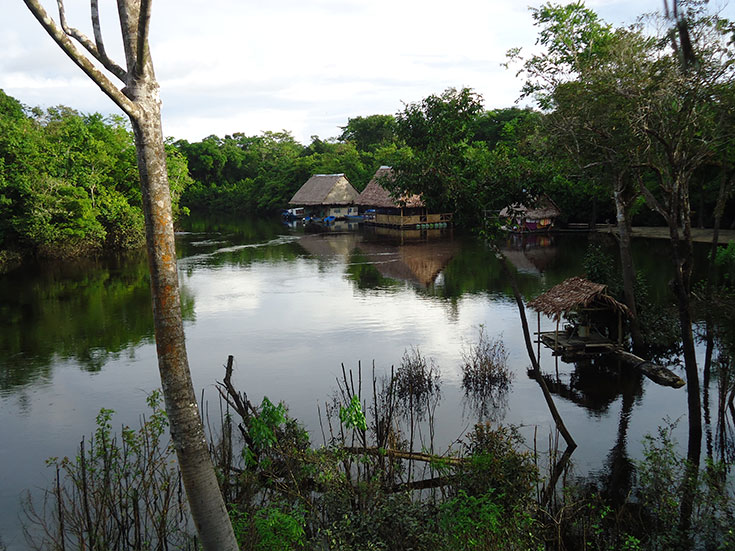 This was a view from the jungle lodge where we stayed.