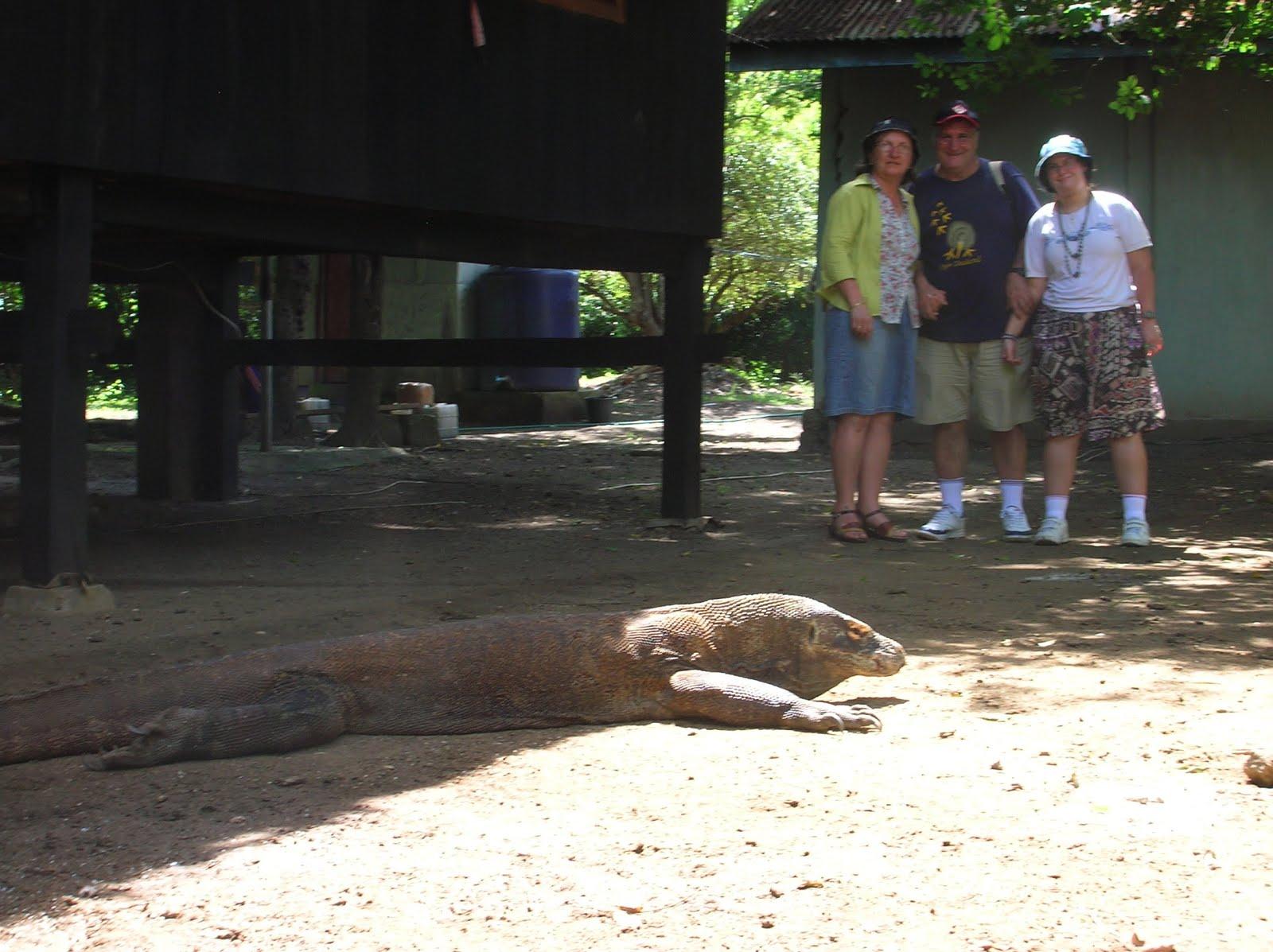 Dragón de Komodo, Parque Nacional de Komodo,Isla de Ricla, Isla de Flores, vuelta al mundo, round the world, La vuelta al mundo de Asun y Ricardo