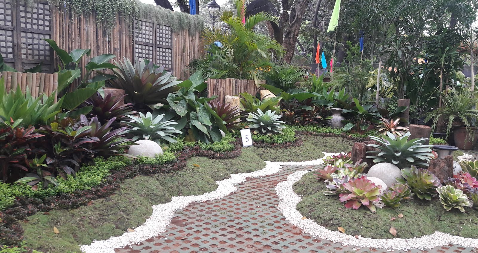 Our philippine trees for Garden design ideas in philippines