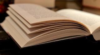 foto di pagine di un libro da sfogliare