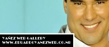 Yanezwebgallery