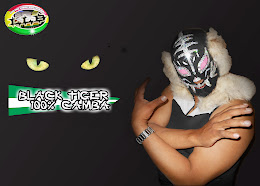 EL 100% CAMBA BLACK TIGER