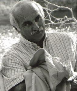 Nestor Raul Toledo
