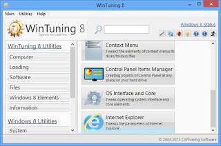 WinTuning 8 1.2 Proffesional Full Version
