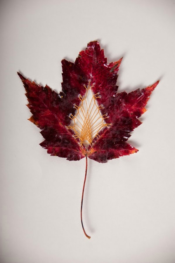 embroidered-leaf-2