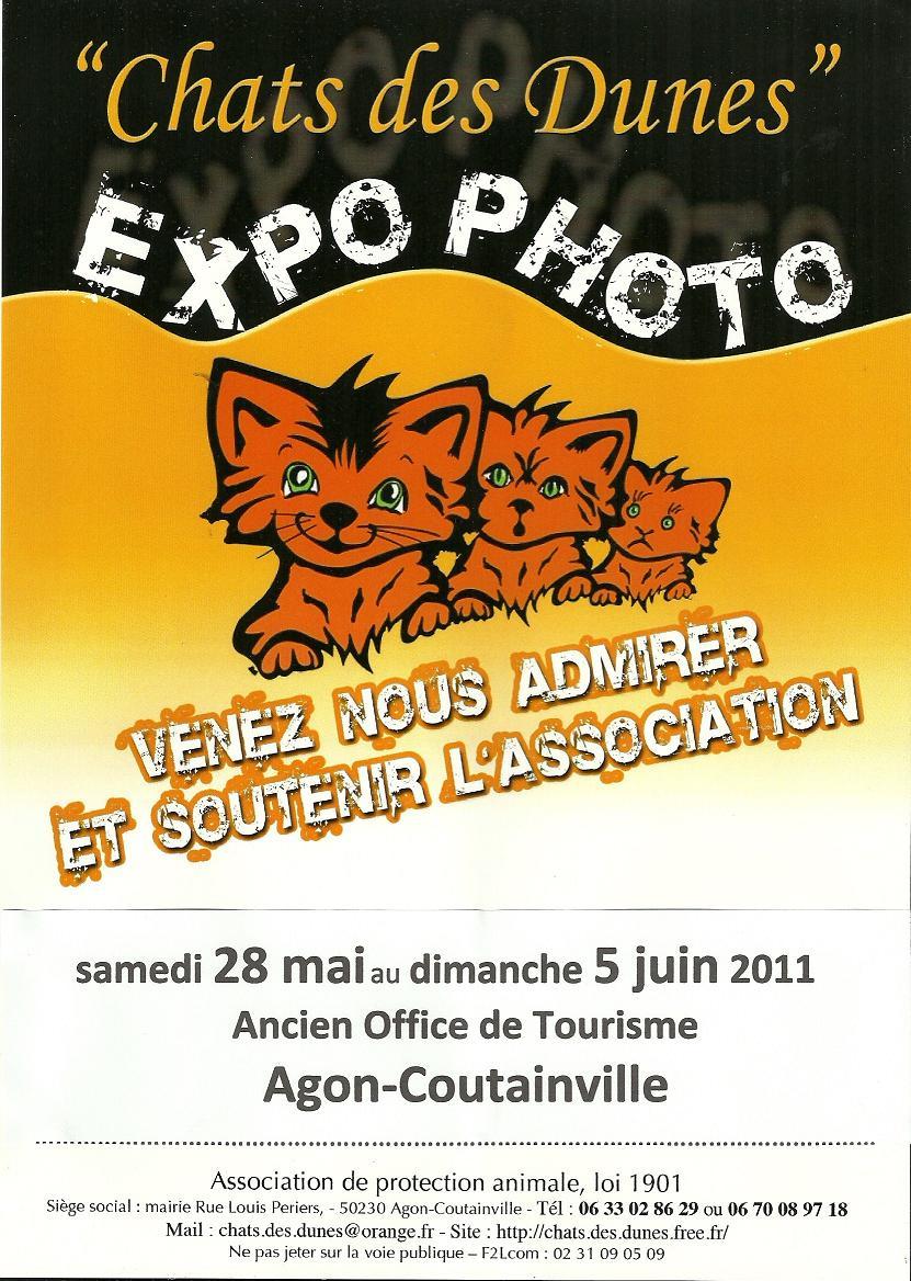 Chez jaguar le chat noir mai 2011 - Office de tourisme agon coutainville ...