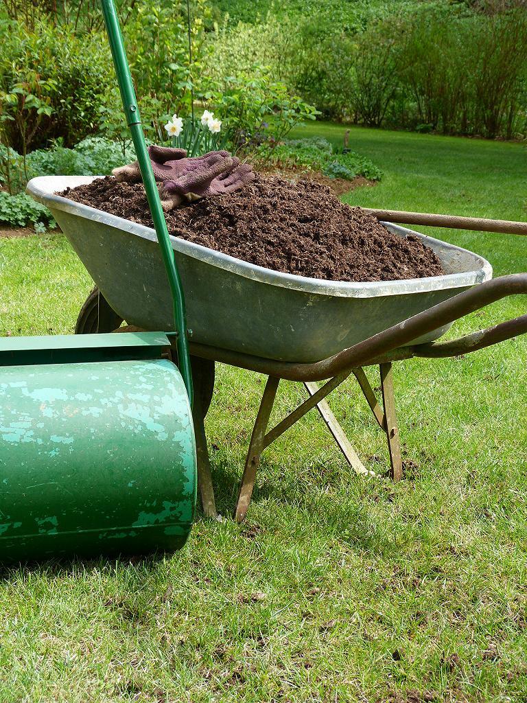 Les pins noirs scarification de la pelouse - Terreau pour gazon ...