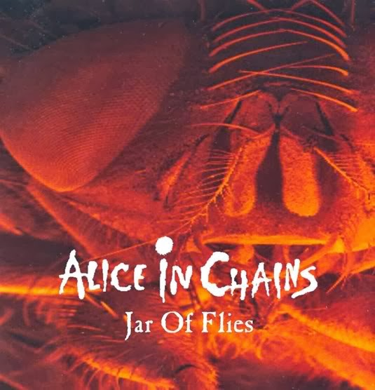 alice in chains mtv unplugged dvd download