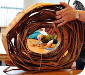 Roll of Cedar