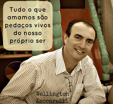 Wellington Zaccarelli