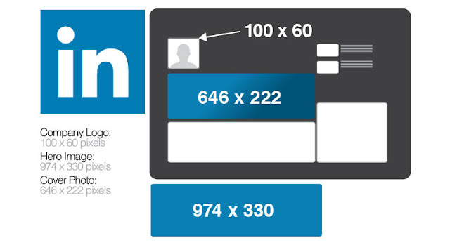 LinkedIn Company Logo Size