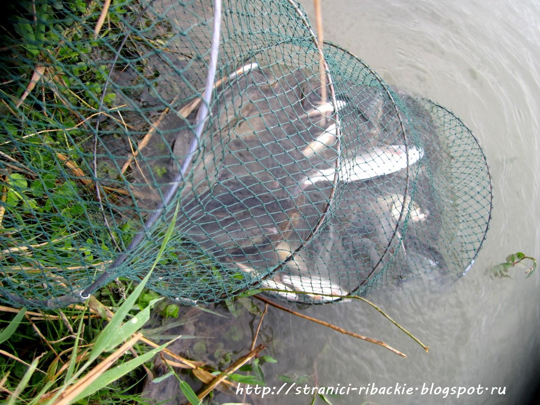 Делаем паук для рыбалки