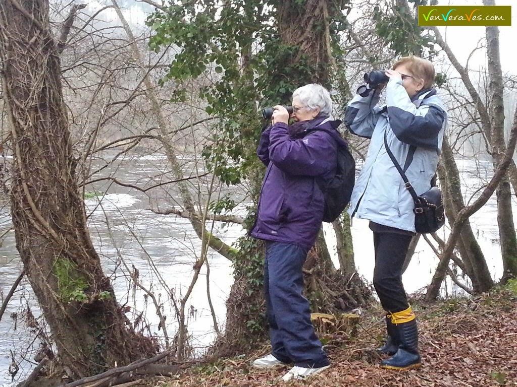Dúas mulleres observando aves con prismáticos na beira do Miño