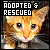 I like adopted and rescued cats
