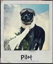 My Dog, Pilot