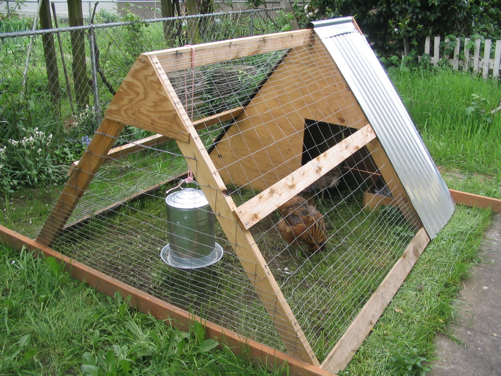 Chicken coop designs chicken coops plans free for Free coop plans