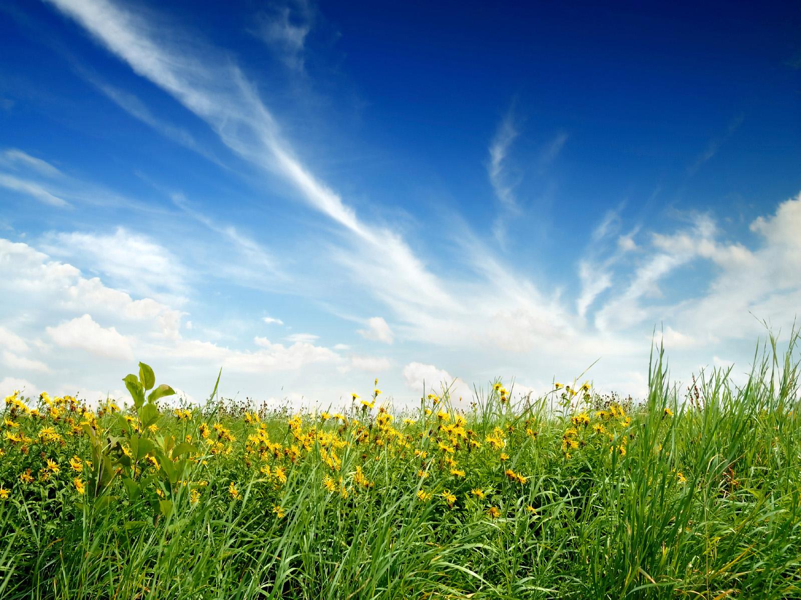 http://4.bp.blogspot.com/-EObq49MZfN8/T0AEcVsEg0I/AAAAAAAAGWM/lk5xFkUzJvc/s1600/Nature+Wallpaper+0005.jpg