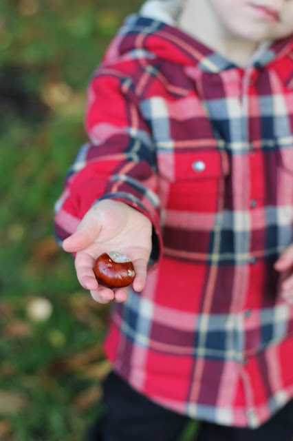 toddler and conker