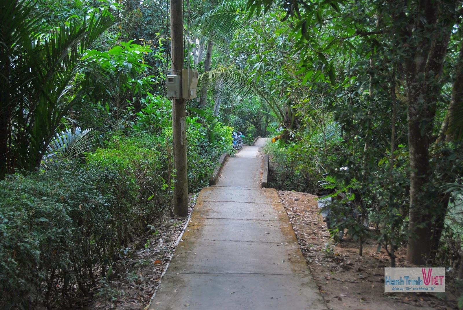Dạo quanh trong đường làng ở khu vực trồng xoài cát Hòa Lộc nổi tiếng ở Cái Bè