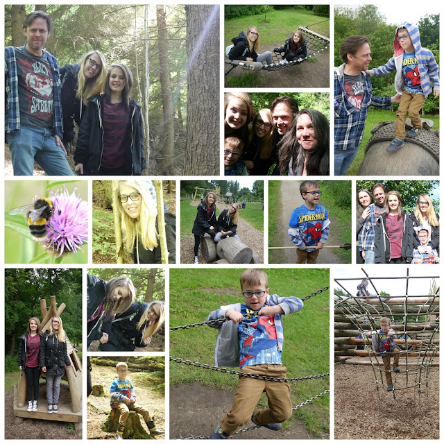 family, holiday, forest