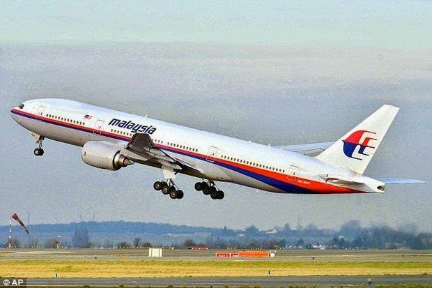 Malaysia Airlines MH 17 Photo