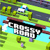 [GameSave] Crossy Road - Endless Arcade Hopper v1.0.3
