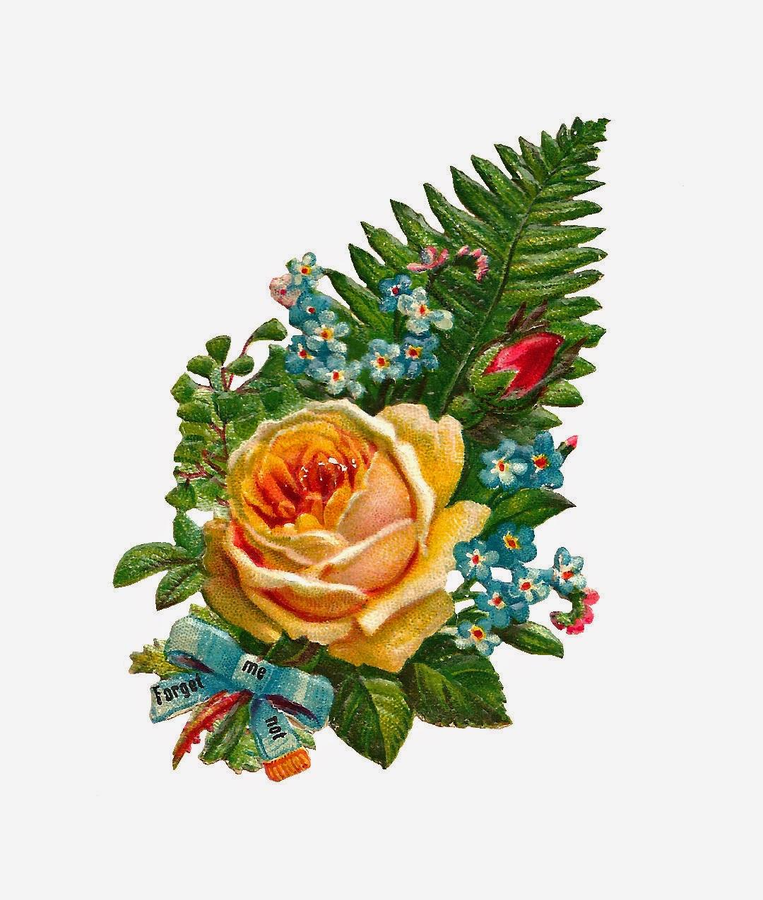 http://4.bp.blogspot.com/-EP9nZ3iXwNg/U5TXtSjO7-I/AAAAAAAAUSk/gBQEsTOyk-A/s1600/forget_me_not_scrap_yllw_rs.jpg