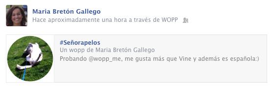 red social de videos española wopp vs vine