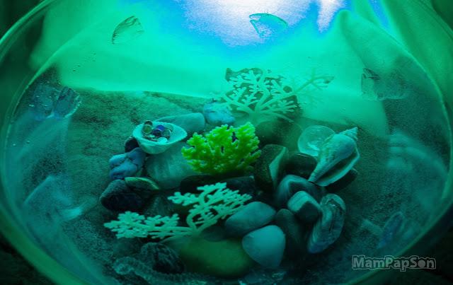 подводный мини-мир своими руками
